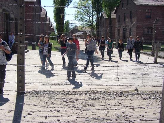 W Muzeum Auschwitz